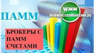 видео ПАММ-счета - что это, как заработать + рейтинг ТОП-5 брокеров