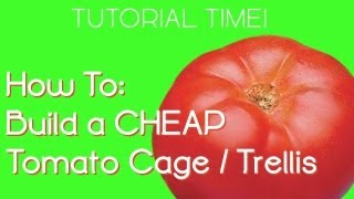 Growing Tomatoes: Diy Cheap Tomato Cage/trellis