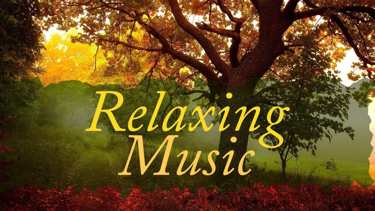 Sleeping Music Fall Asleep Fast With Relaxing Sounds Asmr Sleeping Sounds