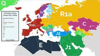 Haplogroup O (mtDNA) - WikiVisually