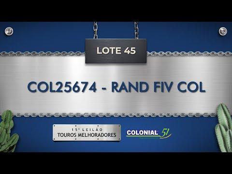 LOTE 45   COL 25674