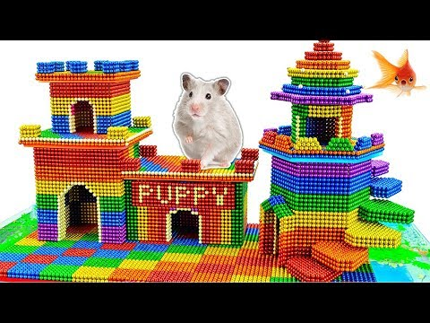 DIY - Build Puppy Dog House And Fish Pond For Hamster With Magnetic Balls (Satisfying)-Magnet Balls