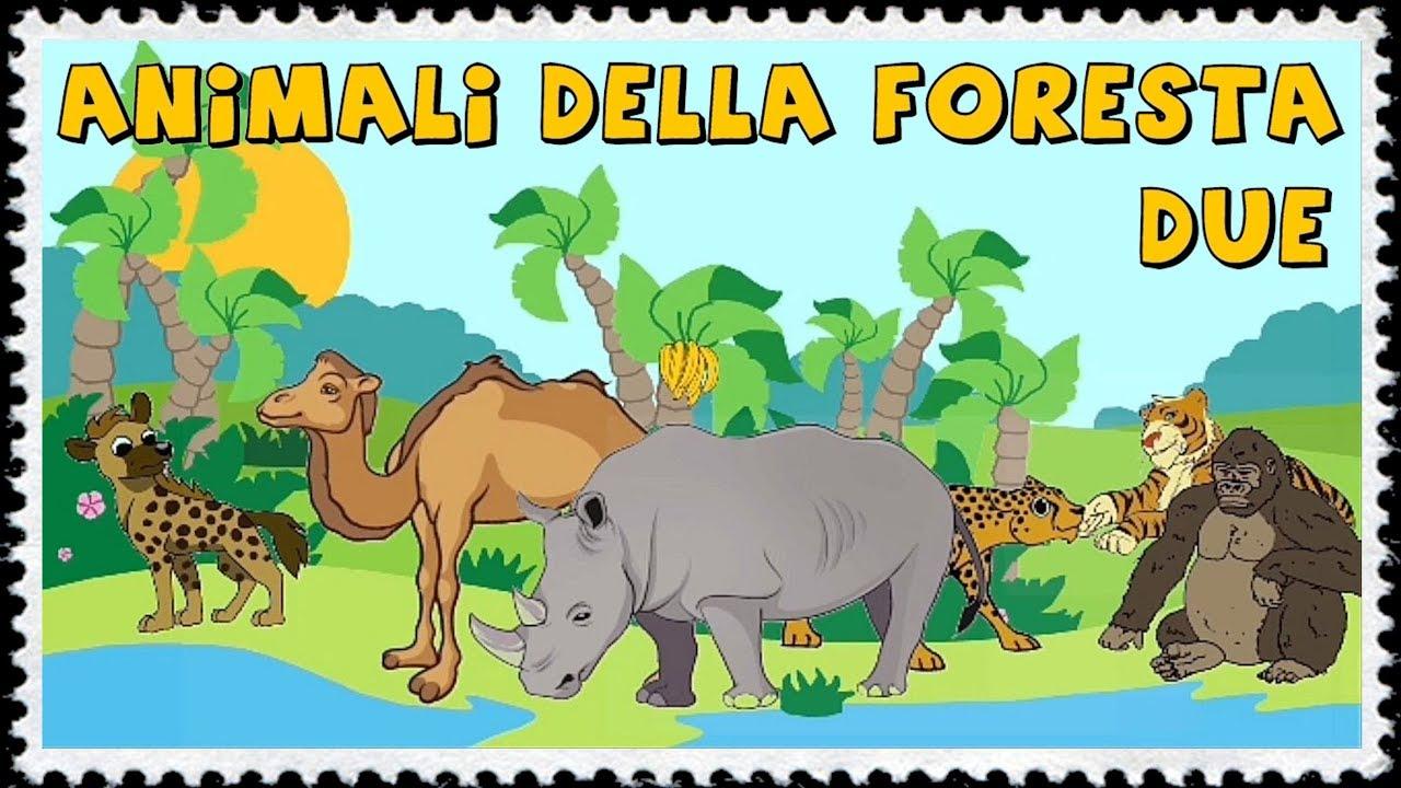 Animali della foresta per i piccolissimi 2 2 youtube for Disegni da colorare animali della foresta