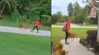11-Year-Old Girl Charged With Snatching Dog in Florida Neighborhood
