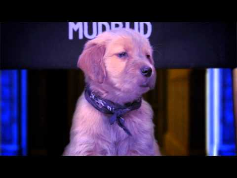 Spooky Buddies: The Curse of the Howlloween Hound Movie Official Trailer 2011 HD