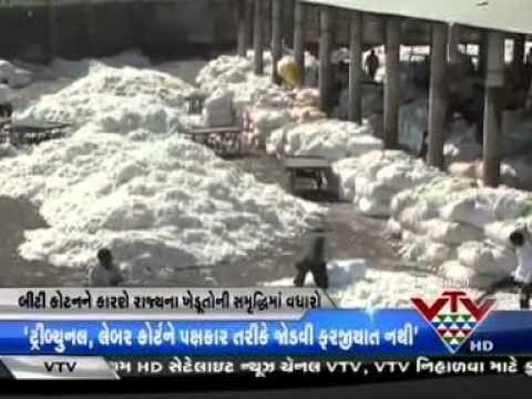 Gujarati channel VTV - coverage of #CSDBtcottonstudy