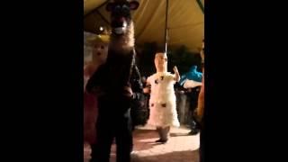 En Tepeyanco los matachines a ritmo de carnaval!