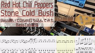 【with tab】 Stone Cold Bush / Red Hot Chili Peppers Bass Cover / 弾いてみた ベース カバー タブ譜