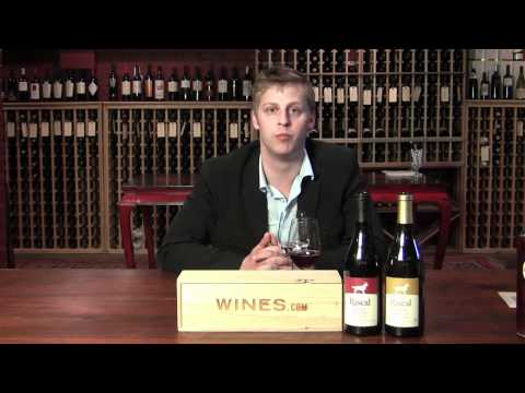 Great Oregon Wine Co Rascal Pinot Noir and Pinot Gris 2010 - with Chris McFall for Wines.com TV