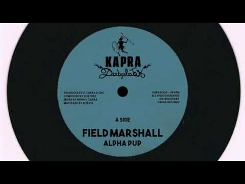 Alpha Pup - Field Marshall / Dennis Capra - Kung Fu - 7 inch / Kapra Dubplates
