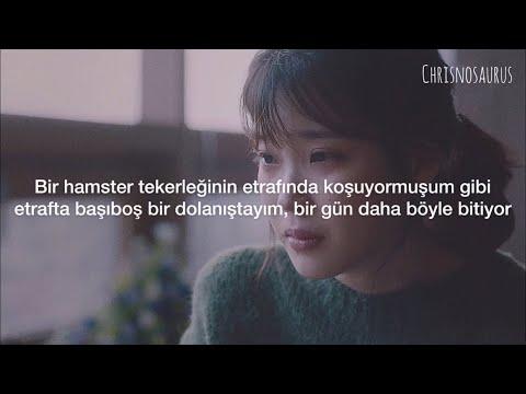 곽진언 (Kwak Jin Eon) – 내 마음에 비친 내 모습 (My Reflection In My Heart) [My Mister OST] 'Türkçe Çeviri'