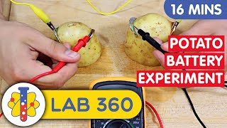 Lab 360 | How To Make A Battery | Potato Battery Experiment| Science Experiments You Can Do At Home
