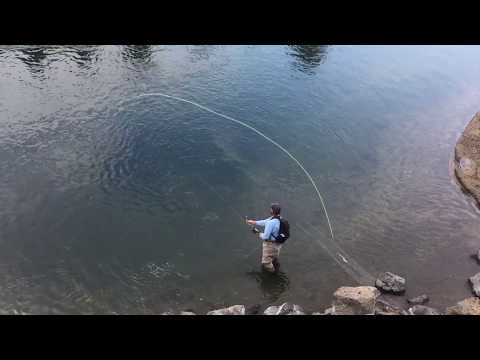 Spey Casting Skagit lines:  Basic and Advanced Skagit Casting Techniques,