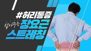 [서울역정형외과_에스힐] 허리통증 완화 방법 장요근 스…