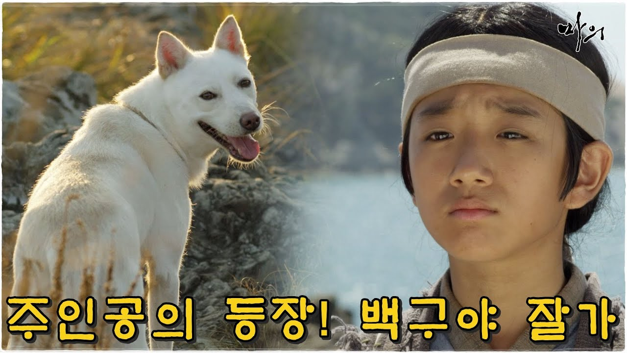 [마의] 어린 주인공의 등장! 복날 강아지를 생각해 풀어주는 광현  (MBC121002방송)