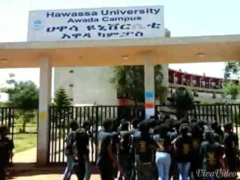 Hawassa University colour day logistics students