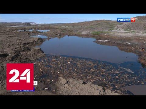 Не быстренько прибраться, а сделать качественно: Путин - о ситуации в Норильске - Россия 24