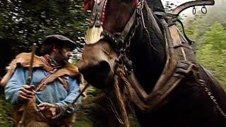 Tête de mule de Christophe Gatineau ( film complet - part 2/2 )