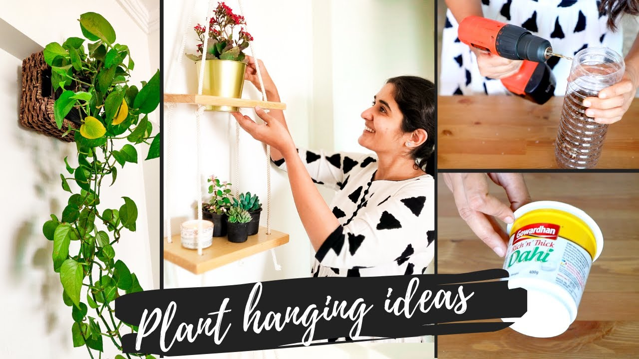 5 Unique Ideas For Hanging Plants Indoors Diy Elegant And Easy Youtube