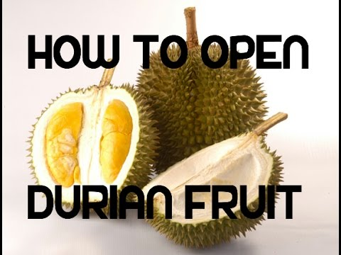 How to open Durian Fruit Video