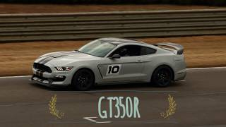 ZR1 hunting in a GT350R Pure beautiful noise!