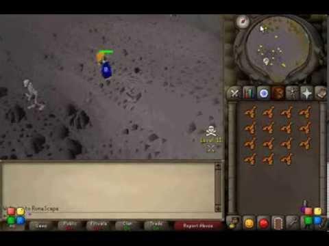 Runescape 2007 - Money Making Guide