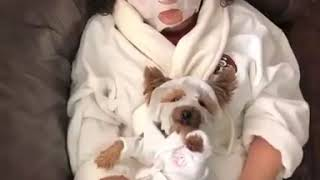 SPA DAY WITH YOUR DOG! GET YOUR DOG TO DO THE SAME