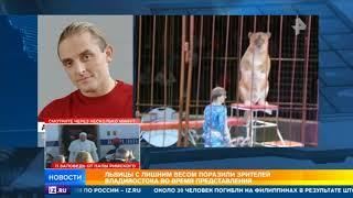 Цирковые львицы с ожирением поразили зрителей во Владивостоке