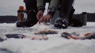 Второй Первый лёд Учимся ловить окуня на мормышку