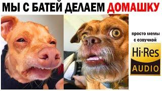 Мемы 2021 и Приколы Самые Смешные и Милые Лучшие МЕМЫ Картинки за День Дневная Подборка Мемов