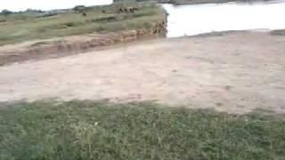 sukho chak,shakar garh,narowal