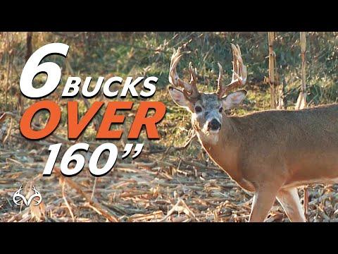 6 Bucks Over 160