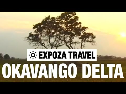 Okavango Delta (Africa) Vacation Travel Video Guide