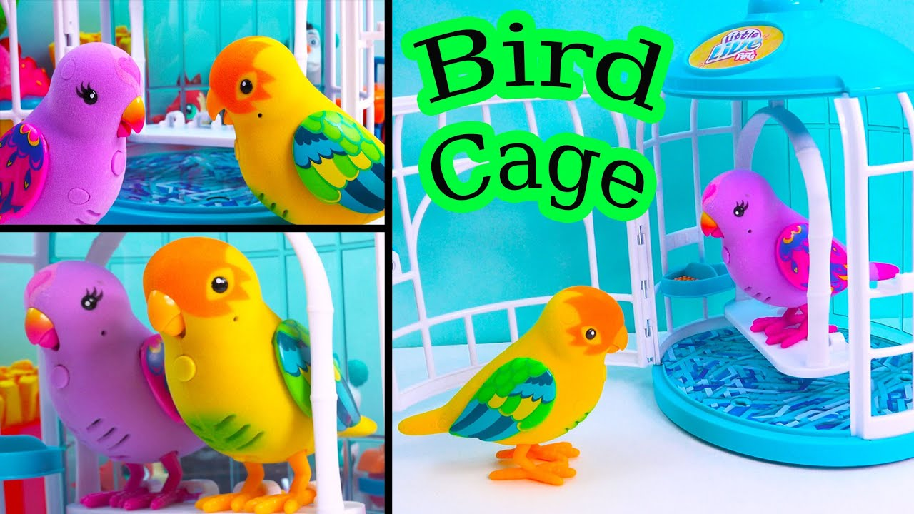 Talking Little Live Pets Beauty Bella Song Sining Love Birds Cage Playset  Cheeky Charlie Review