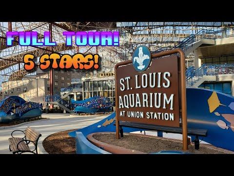 St  Louis Aquarium @ Union Station (Full Walk Through)