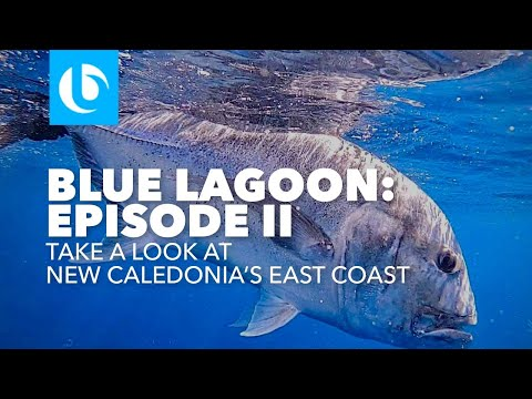 Blue Lagoon 2 - New Caledonia GT Popping