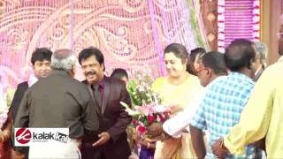 Meena at Actor Pandiarajan Son Wedding Reception