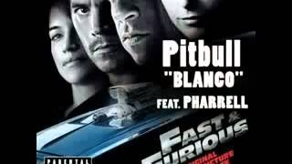 Pitbull Blanco