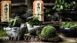 J.Views - June (auv remix)