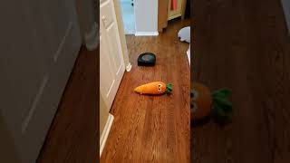 Roomba s9+ iRobot navigation test around various objects.