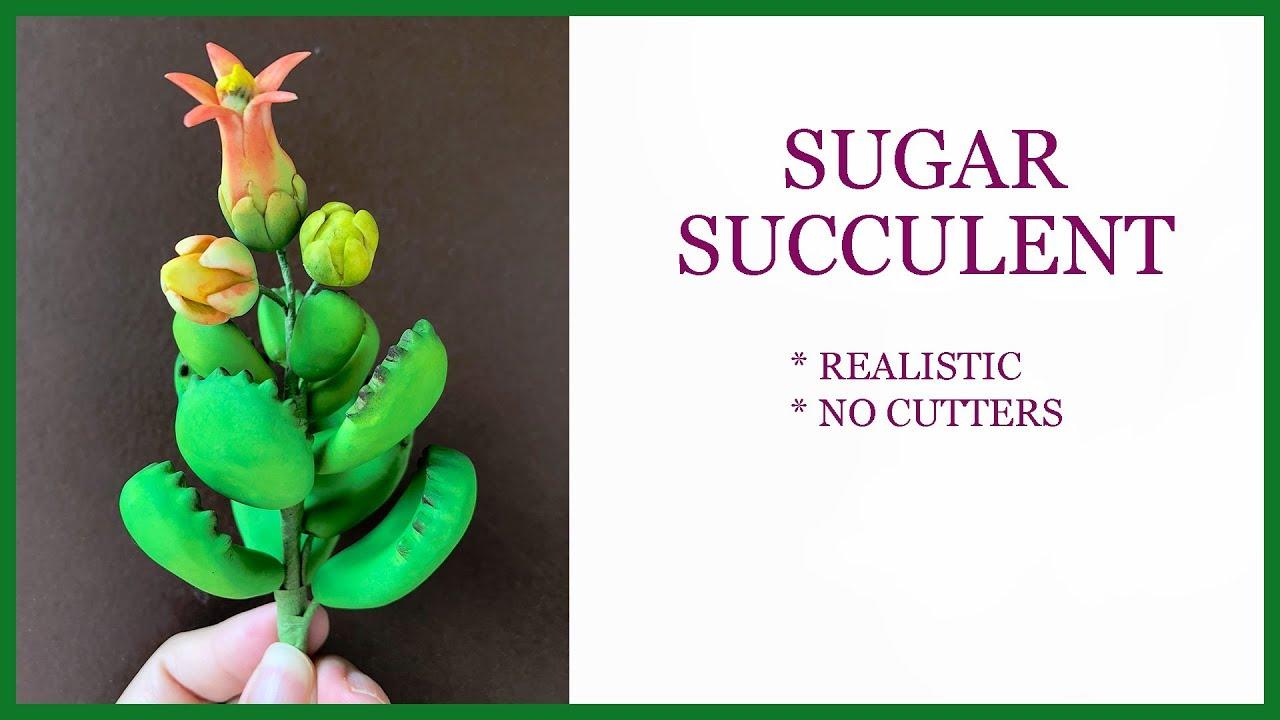 Realistic Sugar Succulent Tutorial: NO CUTTERS Gumpaste Sugar Flower