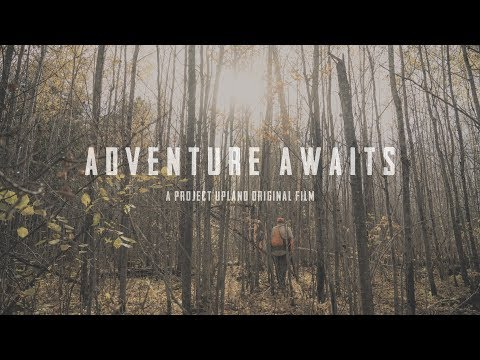 Ruffed Grouse Hunting - Adventure Awaits - A Project Upland Original Film