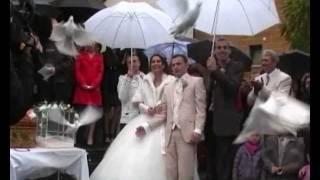 Hochzeitstauben Augsburg von Valentin-Tauben