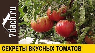 🍅 7 секретов выращивания вкусных томатов - 7 дач