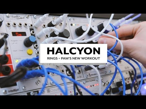 Halcyon | Rings Easter Egg,amela's New Wor Pkout, Chord