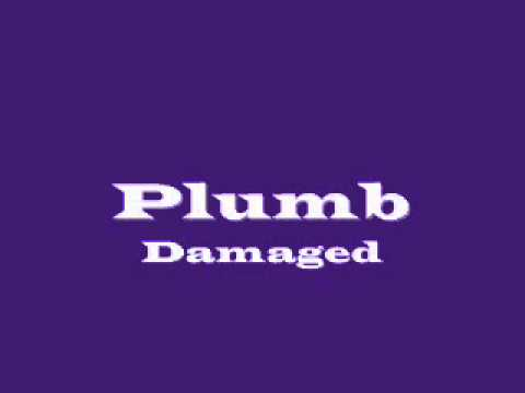 Plumb- Damaged (With Lyrics)
