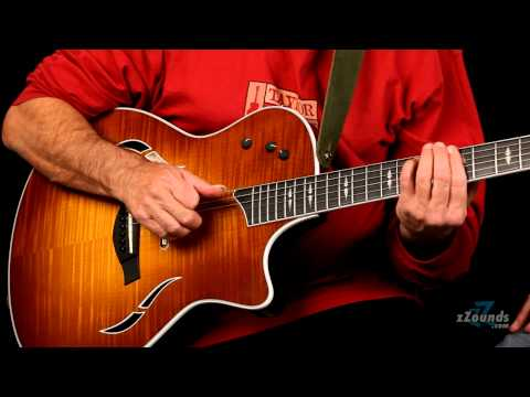 Taylor T5 Guitar Series Demo
