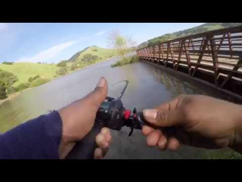 BASS FISHING STAFFORD LAKE NOVATO CA