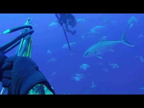 South Padre Island Diving Offshore