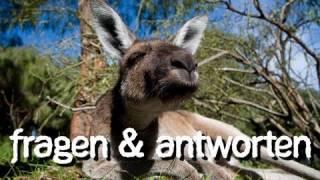 AUSTRALIEN: Miles per Answer